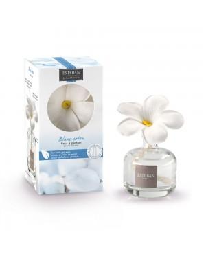 Fleur à parfum et sa...