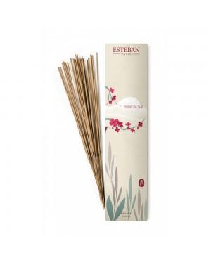 Encens indien Esprit de thé - Esteban