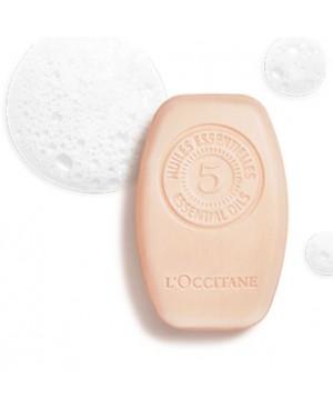 Shampooing solide fraicheur purifiante 80ml - L'Occitane