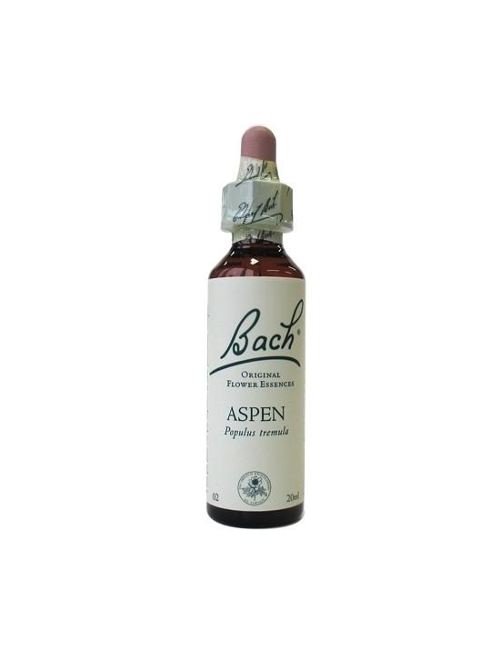 Aspen - Tremple - Populus tremuloïdes