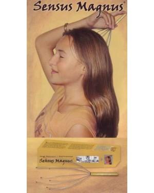 Massage de la tête - Sensus