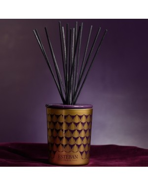 Bouquet parfumé décoratif Figue noire - Esteban