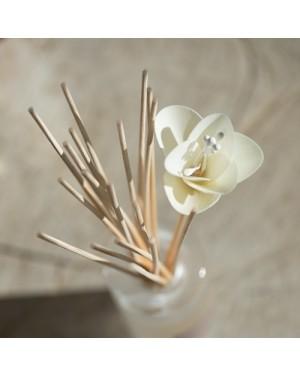 Bouquet parfumé soliflore Fleur d'oranger - Esteban
