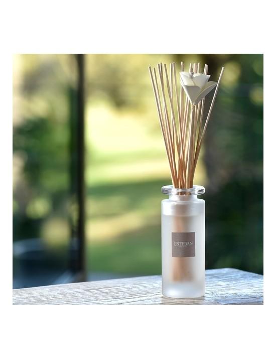 Bouquet parfumé soliflore Verveine douce - Esteban