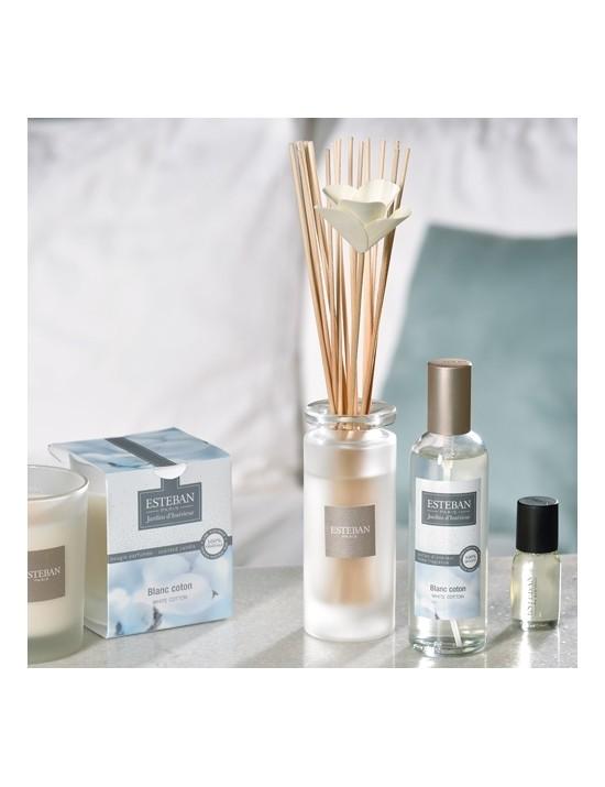 Bouquet parfumé soliflore Blanc coton - Esteban