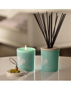 Bougie déco parfumée rechargeable Orchidée blanche - Esteban