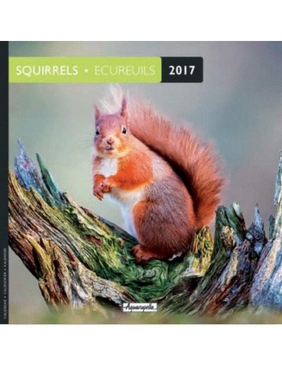 Calendrier 2017 - Ecureuils - Aquarupella