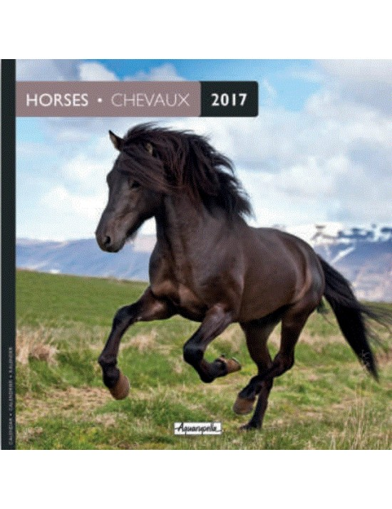 Calendrier 2017 - Chevaux - Aquarupella
