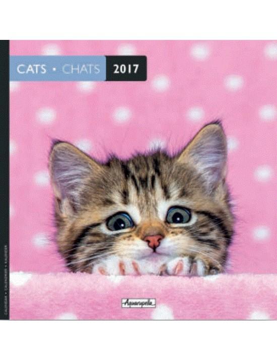 Calendrier 2017 - Chats - Aquarupella