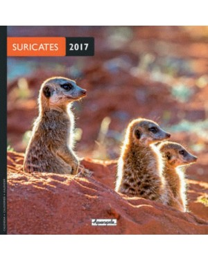 Calendrier 2017 - Suricates - Aquarupella