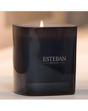 Bougie parfumée Bois de cashmere et Ambre gris - Esteban