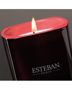 Bougie parfumée Lilas et Tonka - Esteban