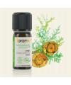 Huile essentielle cyprès bio (cupressus sempervirens)