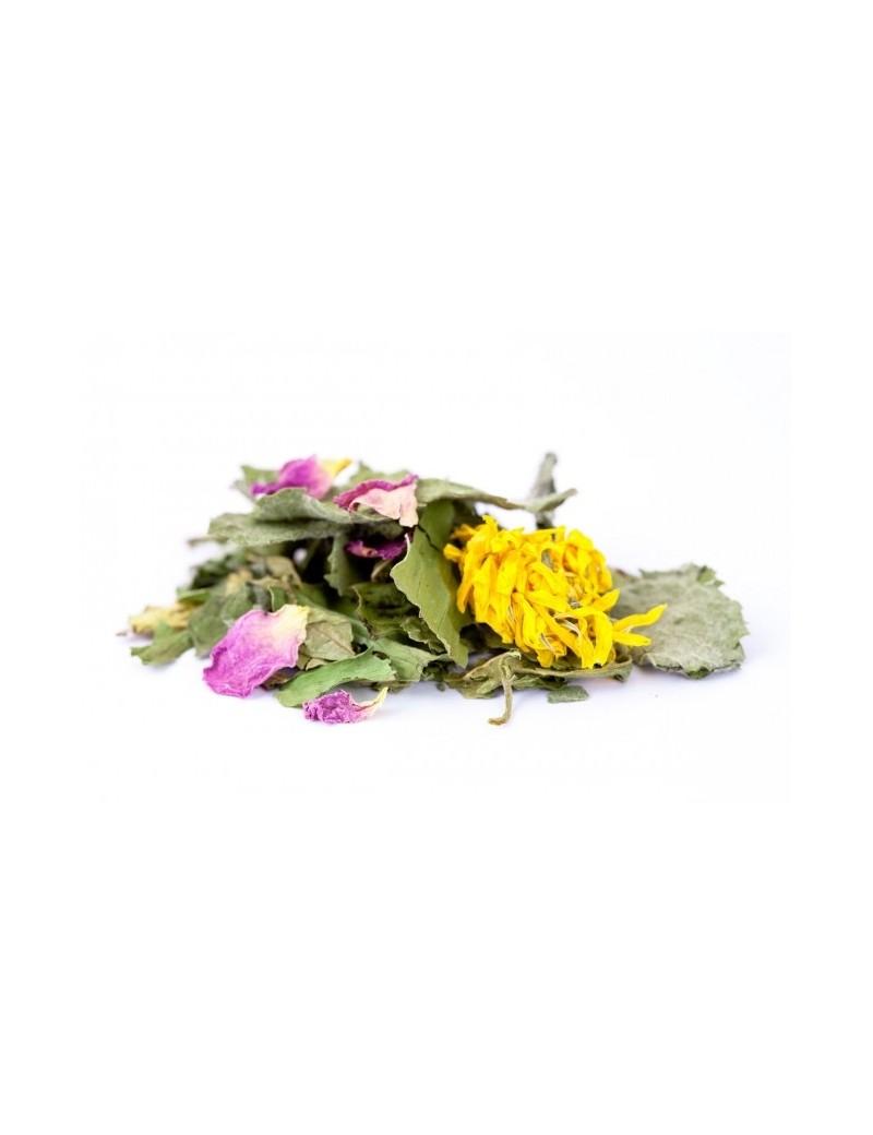 Tisane de plantes bio La potion de la fée Mélusine - Les jardins de Gaïa