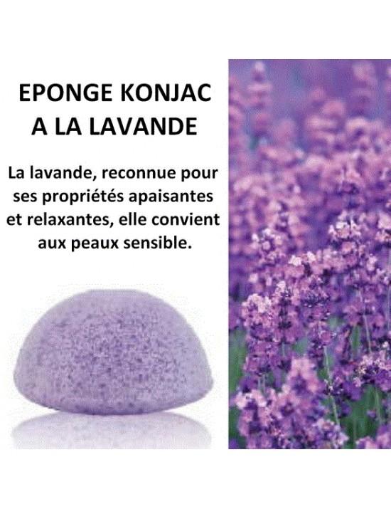 Eponge Konjac à la lavande