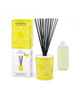 Bouquet parfumé décoratif et sa recharge Terre d'agrumes - Esteban