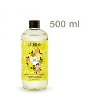 Recharge pour bouquet parfumé Terre d'agrumes 500ml - Esteban
