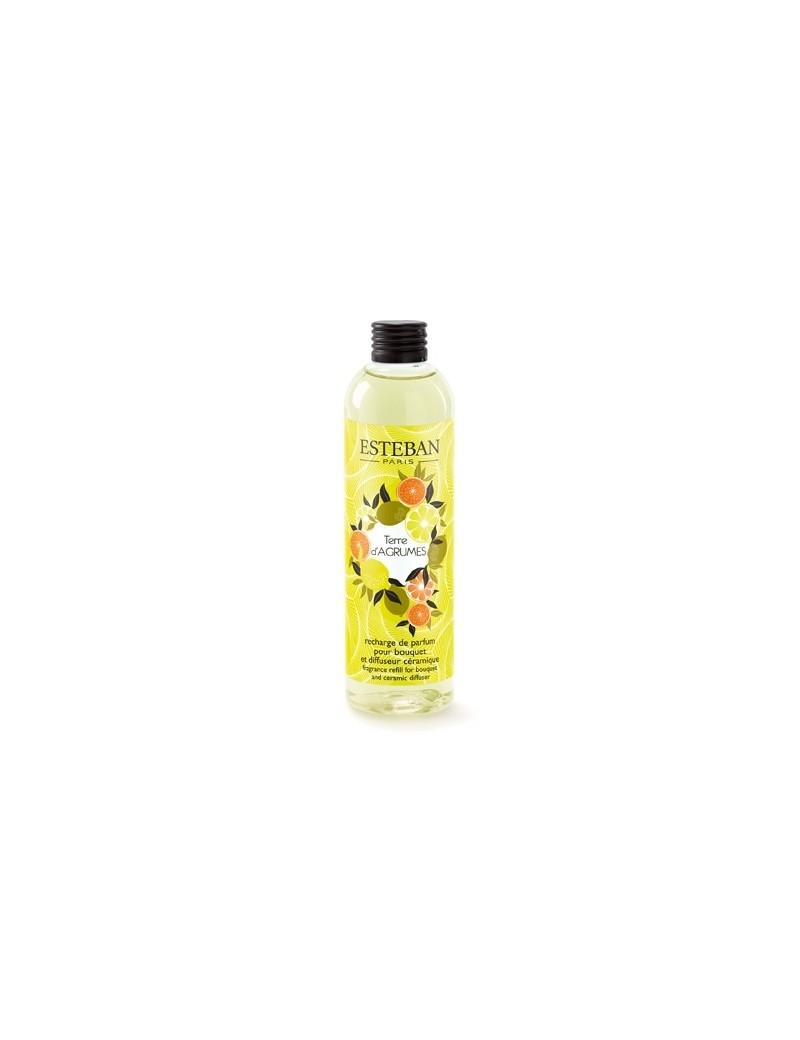 Recharge pour bouquet parfumé Terre d'agrumes - Esteban