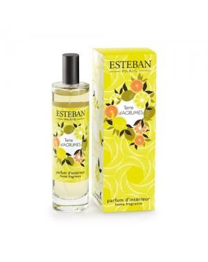 Vaporisateur de parfum Terre d'agrumes - Esteban