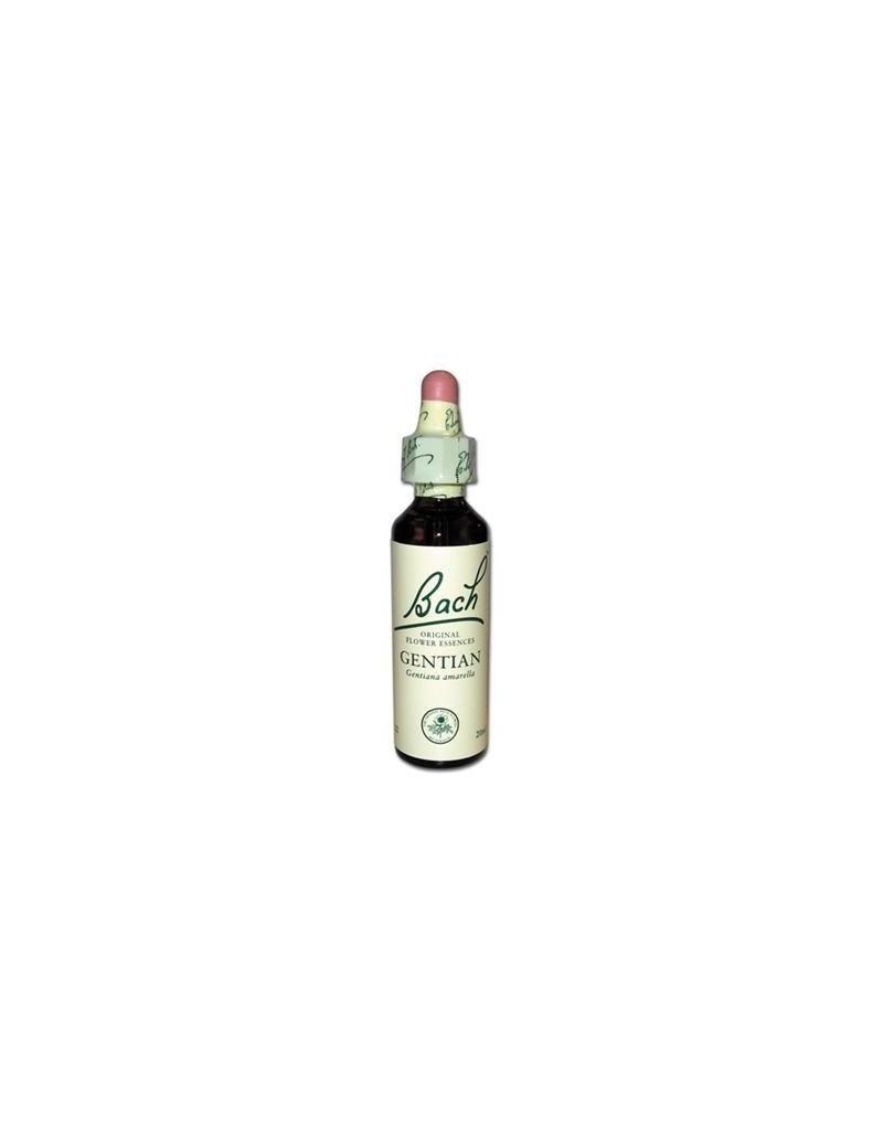 GENTIAN - GENTIANE n°12 - 20 ml                     stk1