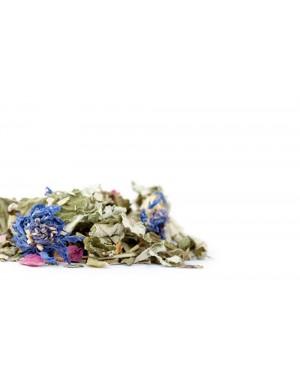 Tisane de plantes bio La Salsa du Printemps - Les Jardins de Gaïa