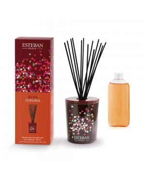 Bouquet parfumé déco et sa recharge Bois Copaiba - Esteban