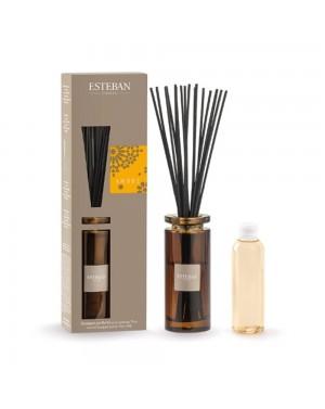 Bouquet parfumé initial Ambre - Esteban