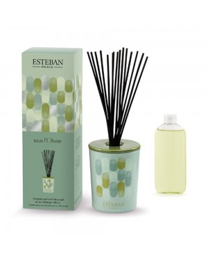 Bouquet parfumé décoratif et sa recharge Sous l'Olivier - Esteban