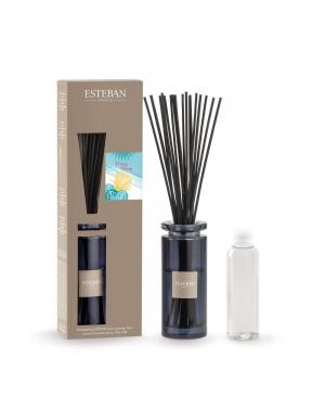 Bouquet parfumé initial Ylang-Ylang - Esteban